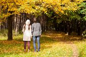 Back View Of Young Couple In Love On The Big Autumn Meadow Under Large Maple Tree At Sunny Fall Day