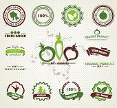 Set of organic and farm fresh food badges