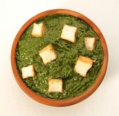 foto of paneer  - Delicious,hot and spicy curry dish made with cottage cheese and spinach [[** Note: Shallow depth of field ** Note: Soft Focus at 100%, best at smaller sizes - JPG