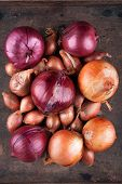 image of red shallot  - Set of golden red onions and shallots - JPG