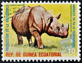 EQUATORIAL GUINEA - CIRCA 1974: Stamp printed in Guinea shows Sumatran rhinoceros Asia