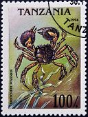 A stamp printed in Tanzania shows image of an Chinese mitten crab Eriocheir sinensis