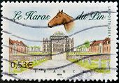 FRANCE - CIRCA 2005: A stamp printed in France dedicated to Le Pin au Haras circa 2005