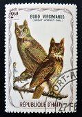 HAITI - CIRCA 1975: A stamp printed in Haiti shows Great horned owl circa 1975