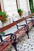 Bench In The Street