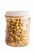 Sprouting Lentils Growing In A Glass Jar