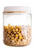 Wet Sprouting Lentils In A Glass Jar In A Glass Jar