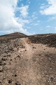 Barren Mountain Track
