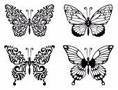 Vector Set Of Butterflies