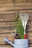 Chives With Garden Tools