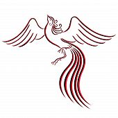 Black And Red Graceful Firebird Contour