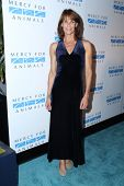 LOS ANGELES - SEP 12:  Alexandra Paul at the Mercy For Animals 15th Anniversary Gala  at London Hotel on September 12, 2014 in West Hollywood, CA