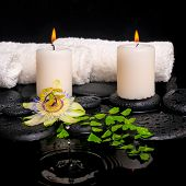 Spa Setting Of Passiflora Flower, Green Branch Fern And Candles On Zen Stones With Drops In Ripple R