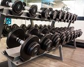 many black dumbbell in fitness room