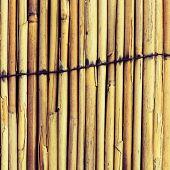 Beautiful Square Bamboo Texture