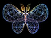 Toward Digital Butterfly