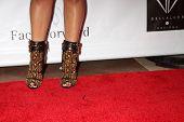 LOS ANGELES - SEP 13:  Shantel Jackson at the 5th Annual Face Forward Gala at Biltmore Hotel on Sept