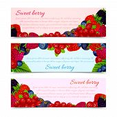 Berries banners set horizontal