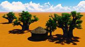 image of baobab  - African village With baobabs and hut - JPG