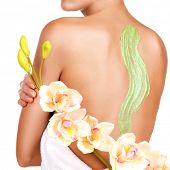 woman cares about skin of body using cosmetic scrub on the back - isolated on white. Beauty treatmen