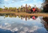 Cambodia, Siem Reap, Angkor wat khmer temple landscape photography with elephant. Travel to Asia