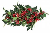 Christmas and winter holly decoration with red berries and pine cones over white background.