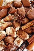 Different kinds of chocolates with spices close-up background