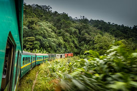 stock photo of plateau  - Train going through beautiful lush rainforest between the high plateau city of Fianarantsoa and the port-city of Manakara ** Note: Soft Focus at 100%, best at smaller sizes - JPG