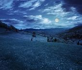 picture of moon-flower  - village in mountains behind the agricultural meadow with flowers on hillside at night in full moon light - JPG
