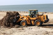 foto of azov  - Tractor removes algae after the storm on a beach - JPG