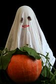 stock photo of jack-o-laterns-jack-o-latern  - Little ghost and pumkin - JPG