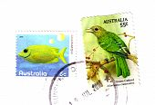 Australia Circa 2010 Australian Postal Stamp Cancelled Bird Fish