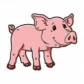 Cartoon piggy