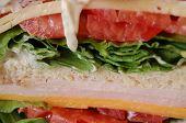 Juicy Sandwich