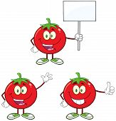 Red Tomato Cartoon Mascot Character Different Interactive Poses 4. Collection Set