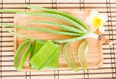 stock photo of bamboo leaves  - Fresh aloe vera leaf in wooden plate on bamboo mat - JPG