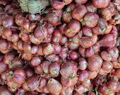 stock photo of red shallot  - red onion on sale in the market - JPG