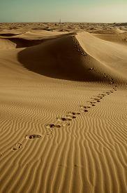 pic of sahara desert  - Footprints on desert sand dunes in the desert route in the sand - JPG