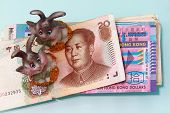 Figurine Rabbit With Rmb Currency