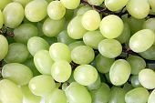 Texture Grape, Bunch Of Fresh Grapes, Fresh Green Grapes. Healthy Fruits Wine Grapes Background, Gre poster