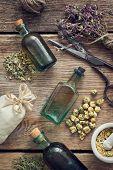 Tincture Bottles, Assortment Of Dry Healthy Herbs, Mortar, Sachet, Scissors. Herbal Medicine. Top Vi poster