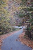 stock photo of long winding road  - A long winding road in the hills of Hot Springs Arkansas in the Fall - JPG