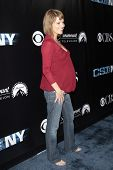 LOS ANGELES - NOV 1: Anna Belknap (pregnant)  at the CSI NY 100th episode party at the Edison Downto