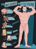 Testosterone Influence Infographic Image Isolated On A Dark Grey Background. Male Sex Hormone And It poster