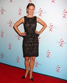 LOS ANGELES - AUG 27:  Sharon Case attending the Daniel Goddard Fan Event 2011 at the Universal Sheraton Hotel on August 27, 2011 in Los Angeles, CA