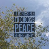 Inspirational Motivational Quote it Is Possible To Choose Peace Before Worry On Bamboo Leaf And Sk poster