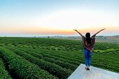 Lifestyle Traveler Women Happy Feeling Good Relax And Freedom Facing On The Natural Tea Farm In The  poster