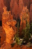 Bryce Canyon National Park Sunrise poster