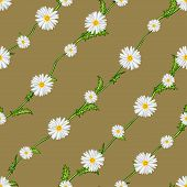 Seamless Pattern From Field Chamomiles On Stems Diagonally. Flowers, Stems And Background Are Separa poster