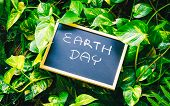 Earth Day Concept, Earth Day Word Writing On Chalkboard With Nature Green Leaves Background poster